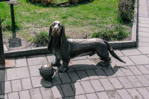 Памятник, Собака, Кострома
