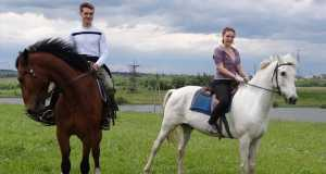 Лошади, Прогулки, Кострома, Михайловское