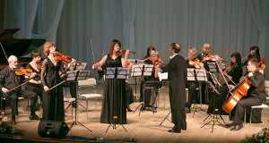 Камерный оркестр, Коллектив