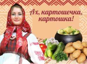 21 сентября 2013 года в Костроме пройдёт городской праздник «Ах, картошечка, картошка!»