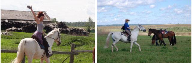 конный клуб, конная база, Крестьянское фермерское хозяйство в деревне Михайловское, мехайловское галич, галич конные туры,    лошади кострома, катание на лошадях кострома, лошади, лошади видео, катание на лошадях, катание на лошадях цена, обучение катанию на лошадях, конные туры, катание верхом на лошади, контур кострома, конная база
