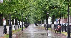 Кострома, Алея, Проспект Мира