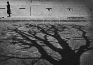 открытие выставки костромского фотохудожника Игоря Груздева «Траектория души»