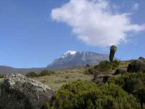 фотовыставка Владимира Анисимова «Русское…Килиманджаро»
