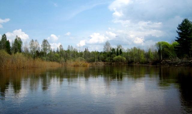 сплав по рекам Кострома, водный туризм Кострома, походы по рекам Костромской области, реки Костромской области, река Ветлуга, река Ветлуга Шарья, сплав по рекам Костромской области
