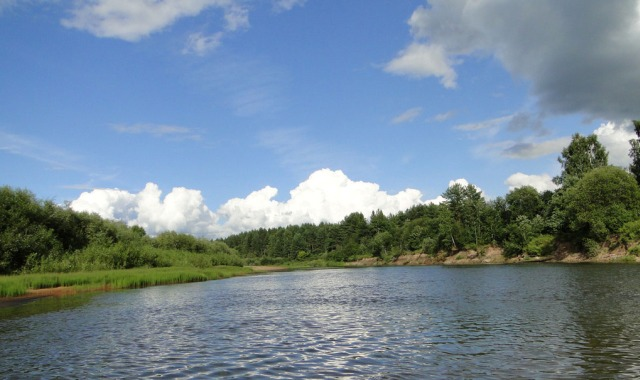 сплав по рекам Кострома, водный туризм Кострома, походы по рекам Костромской области, реки Костромской области, река Нея