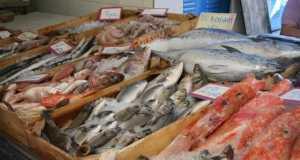 Рыбный магазин, Рыбный двор Кострома, Свежая рыба Кострома