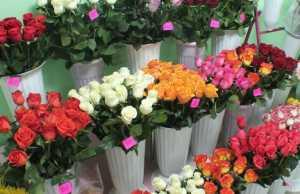 кострома цветы, доставка цветов кострома, цветочные магазины в костроме, магазин цветов Азалия Кострома