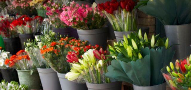 Купить цветы в интернет-магазине во Владимире, Рязани