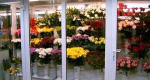 сеть магазинов цветов, цветы сеть магазинов, Магазин цветы Кострома, Цветочные магазины в Костроме, Доставка цветов в Костроме, цветочный магазин Вальс цветов Кострома