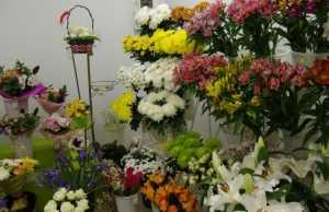 сеть магазинов цветов, цветы сеть магазинов, Магазин цветы Кострома, Цветочные магазины в Костроме, Доставка цветов в Костроме