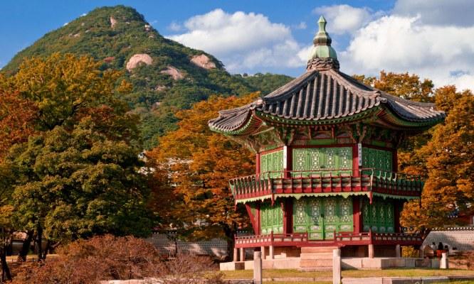 Отдых в Кореи