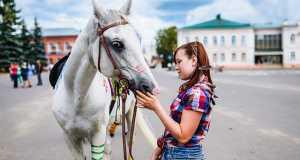 Праздник, Лошадь, Красное