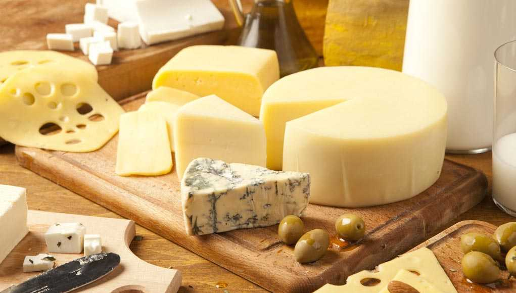 Сыр, Здоровье