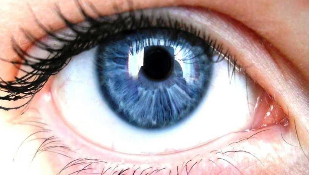 Глаза, Медицина, Здоровье