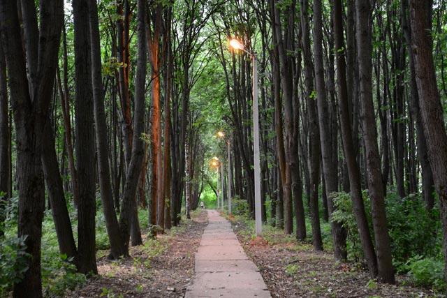 Кострома, Новости, Освещение