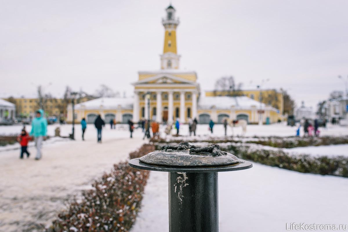 «Несчастливого» бронзового голубя из Костромы опять украли