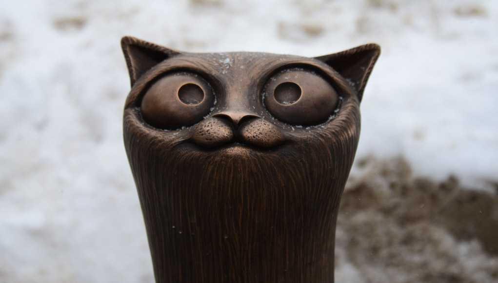 Кот, Кострома, Достопримечательности
