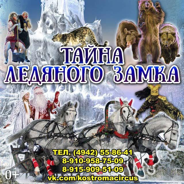 Кострома, Цирк, Программа