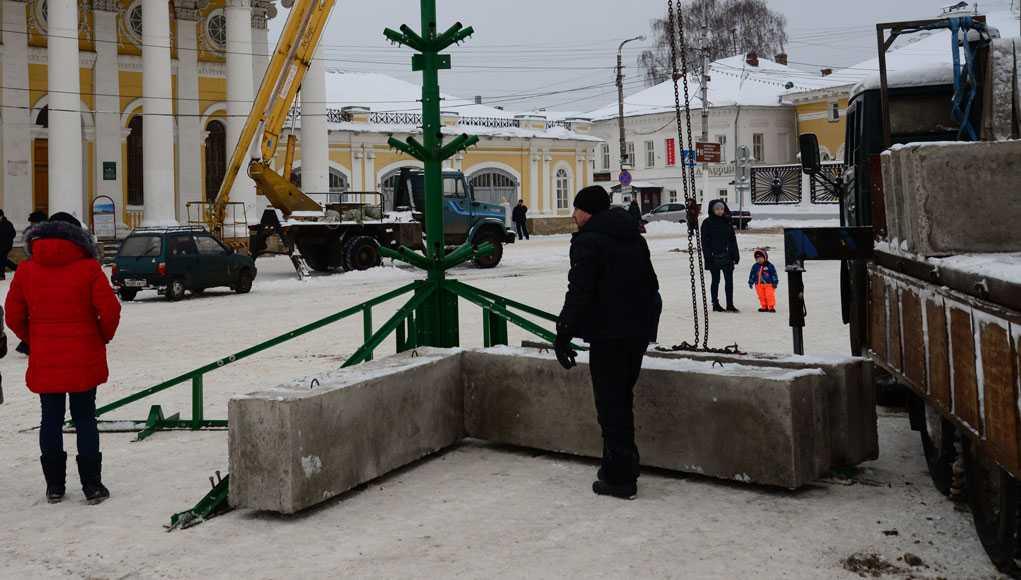 Кострома, Новости, Елка