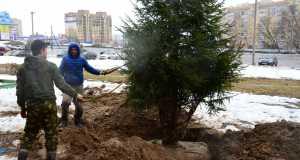 Кострома, Новости, Экология