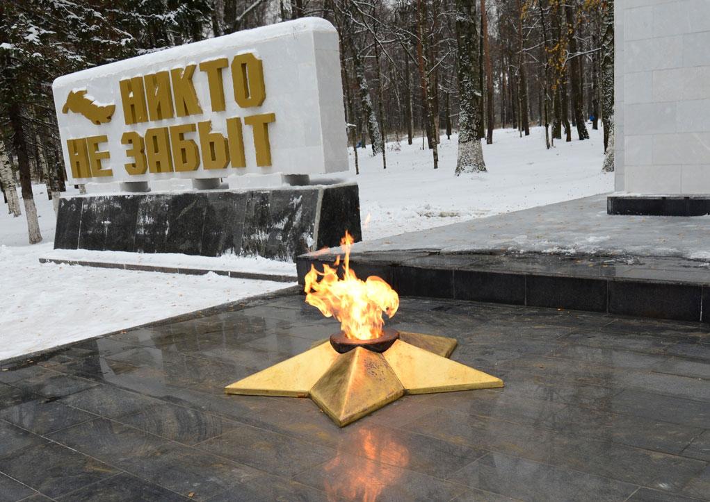 ВКостроме девушка ипарень затоптали звезду бессрочного огня
