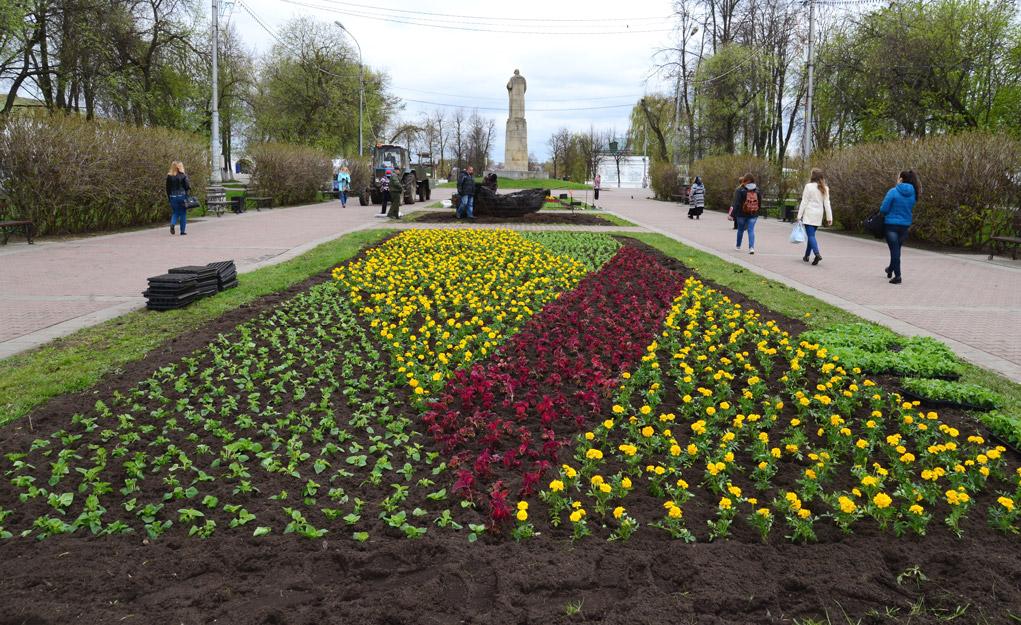 До июня Кострому украсят десятками тысяч живых цветов