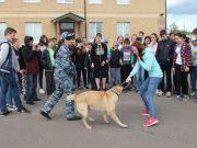 Кострома, Новости