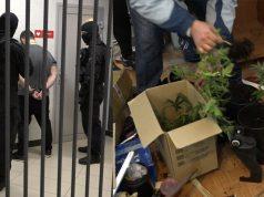 Кострома, Новости, Наркотики, Происшествия