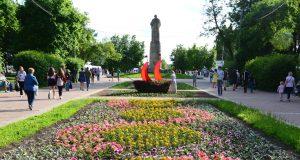 Кострома, Новости, Цветы