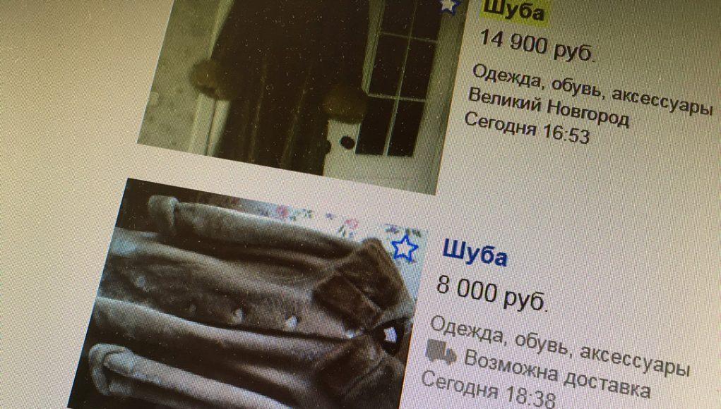 Кострома, Новости, Мошенник