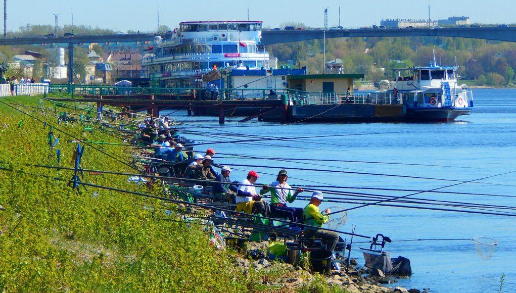 Кострома, Новости, Рыбалка