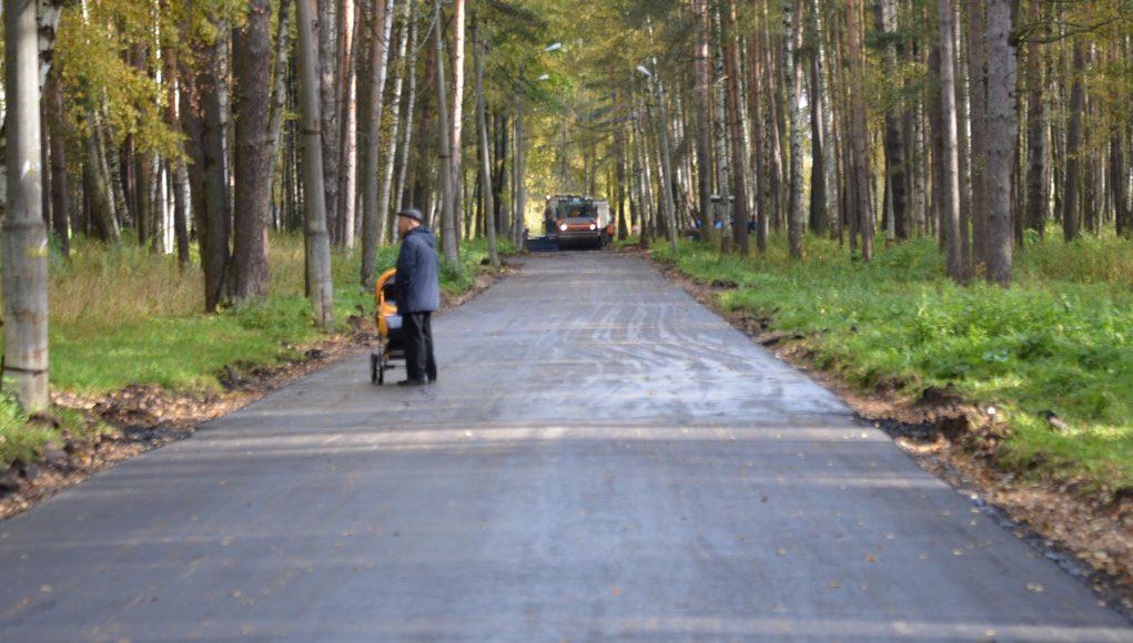 Кострома, Новости, Парк, Берендеевка