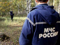 Кострома, Новости, Грибник