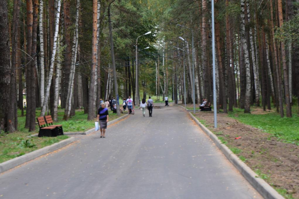 Кострома, Новости, Парк, Камеры